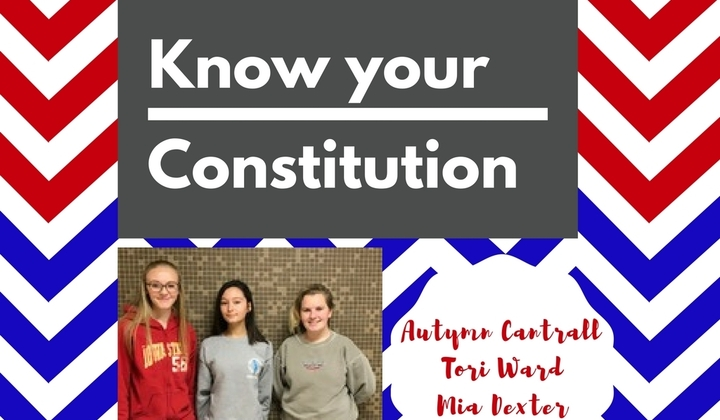 Know+your+constitution